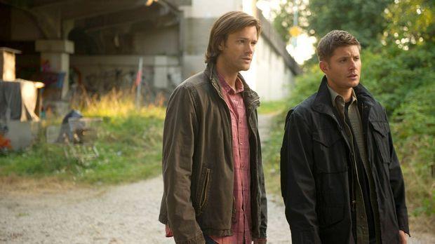 Sam (Jared Padalecki, l.) und Dean (Jensen Ackles, r.) recherchieren nach Cas...
