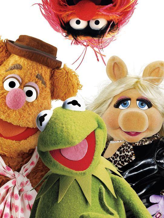 muppets-freisteller-09-disneyjpg 1425 x 1900 - Bildquelle: Disney