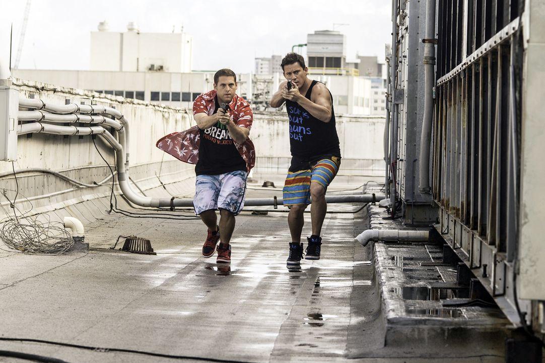 22-Jump-Street-14-Sony-Pictures - Bildquelle: Sony Pictures Releasing GmbH