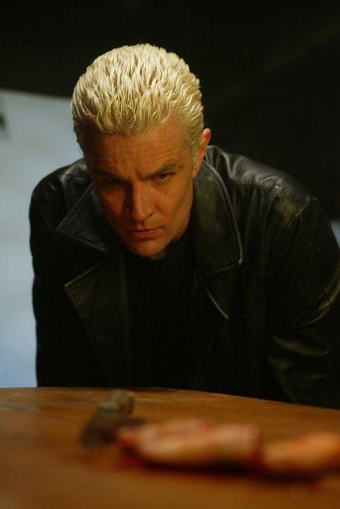 Auf einem Tisch findet Spike (James Marsters) ein paar abgetrennte Finger -  Was hat das zu bedeuten? - Bildquelle: The WB Television Network