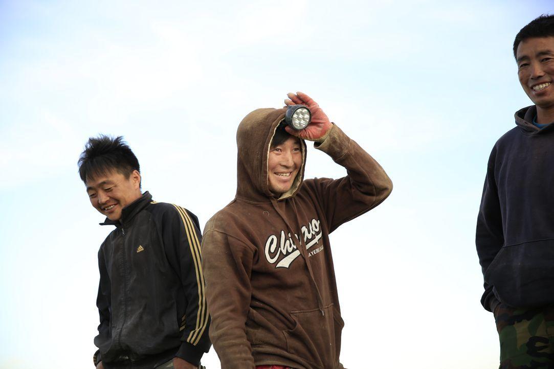 Mongolische Glücksritter