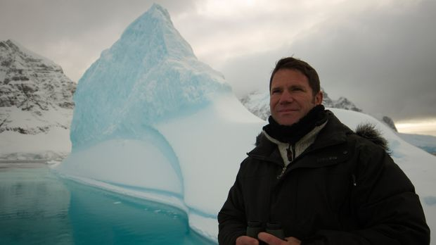Von einem Pol zum Anderen: Steve Backshall beendet seine Reise in der Antarkt...