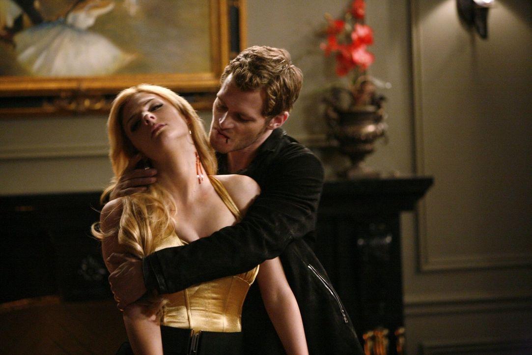 Hat mal wieder das Verlangen nach frischem Blut: Klaus (Joseph Morgan, r.) - Bildquelle: Warner Brothers