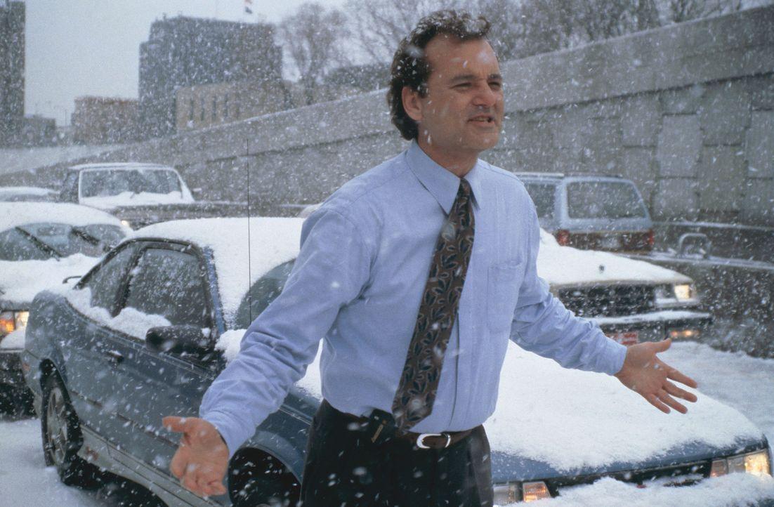 Ein Schneesturm im ist der Grund dafür, dass Wetterfrosch Phil Connors (Bill Murray) noch eine weitere Nacht in dem Kaff Punxutawney bleiben muss ... - Bildquelle: Columbia TriStar