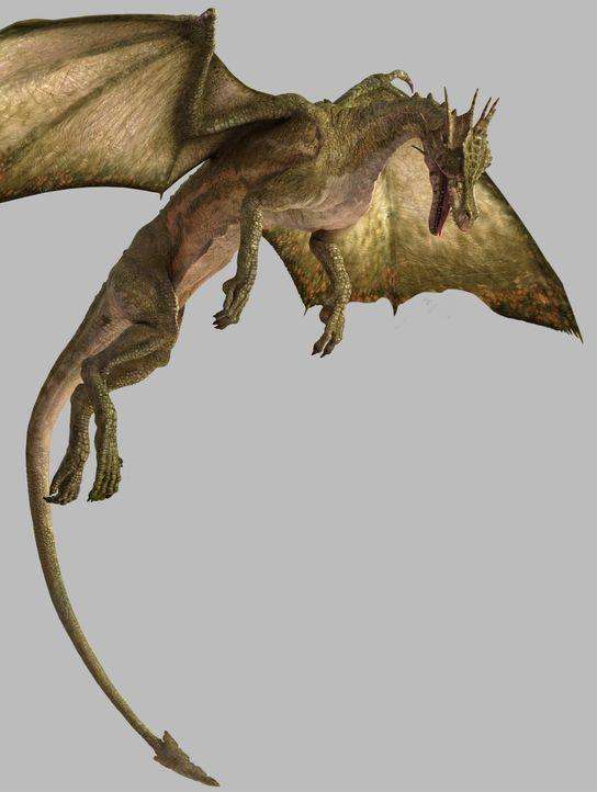 Der Drache ist die größte bekannte flugfähige Kreatur, die Unglaubliches leisten muss, um seine enorme Körpermasse in der Luft halten zu können...