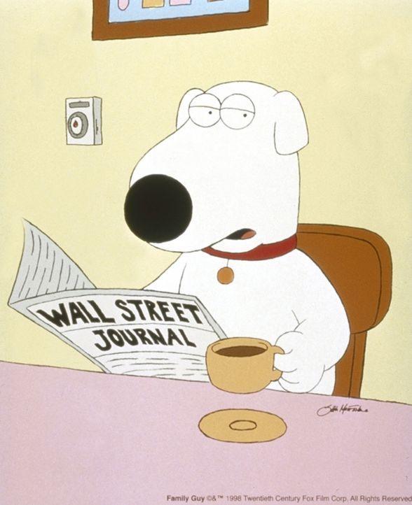 (1. Staffel) - Brian, der Hund: Er ist unbestritten das eloquenteste Mitglied des Griffin-Haushaltes und der einzige, der im täglichen Durcheinander... - Bildquelle: TM +   2000 Twentieth Century Fox Film Corporation. All Rights Reserved.