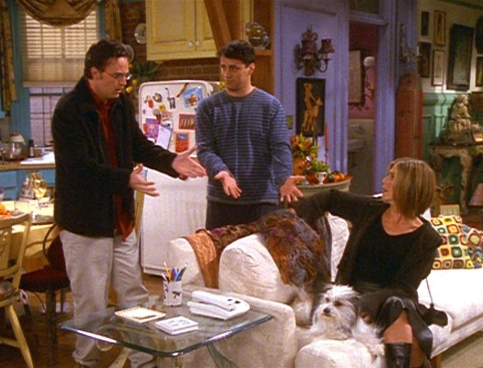 Chandler (Matthew Perry, l.) ist im Gegensatz zu seinen Freunden gar nicht begeistert darüber, einen Hund um sich zu haben. - Bildquelle: TM+  2000 WARNER BROS.