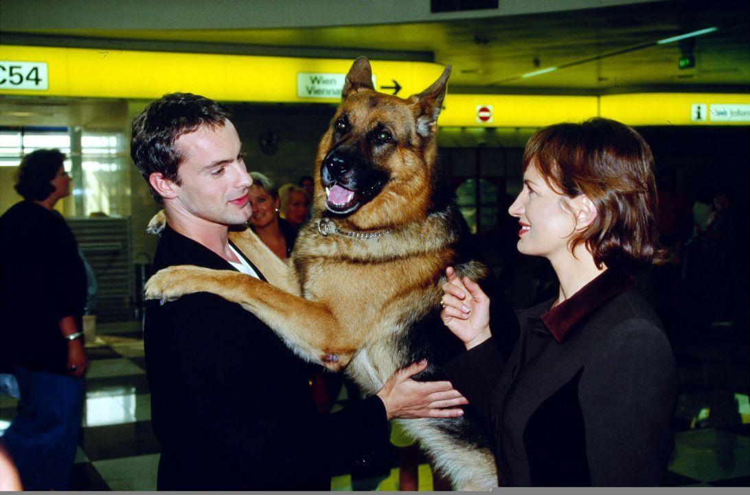 Lucia Amato (Maddalena Crippa, r.) nimmt am Flughafen von Kommissar Brandtner (Gedeon Burkhard, l.) und Rex Abschied. - Bildquelle: Ali Schafler Sat.1
