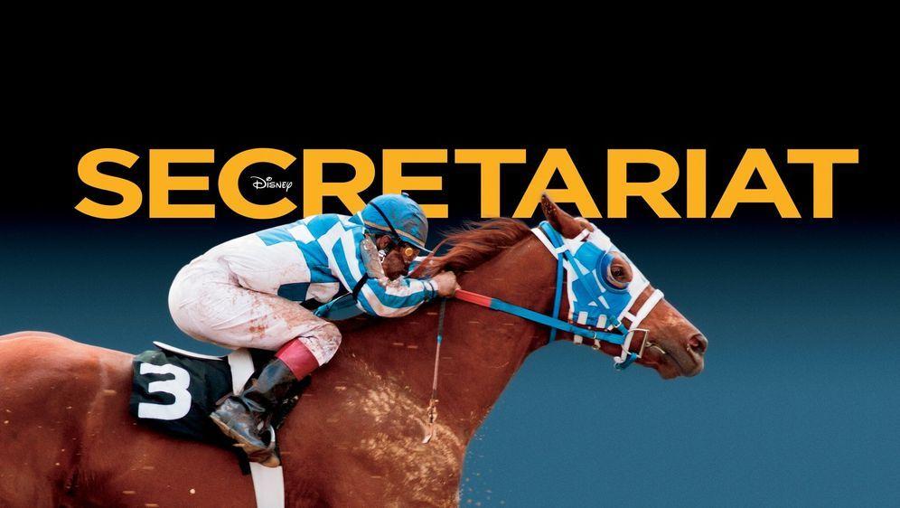 Secretariat - Ein Pferd wird zur Legende - Bildquelle: John Bramley Disney Enterprises, Inc.  All rights reserved