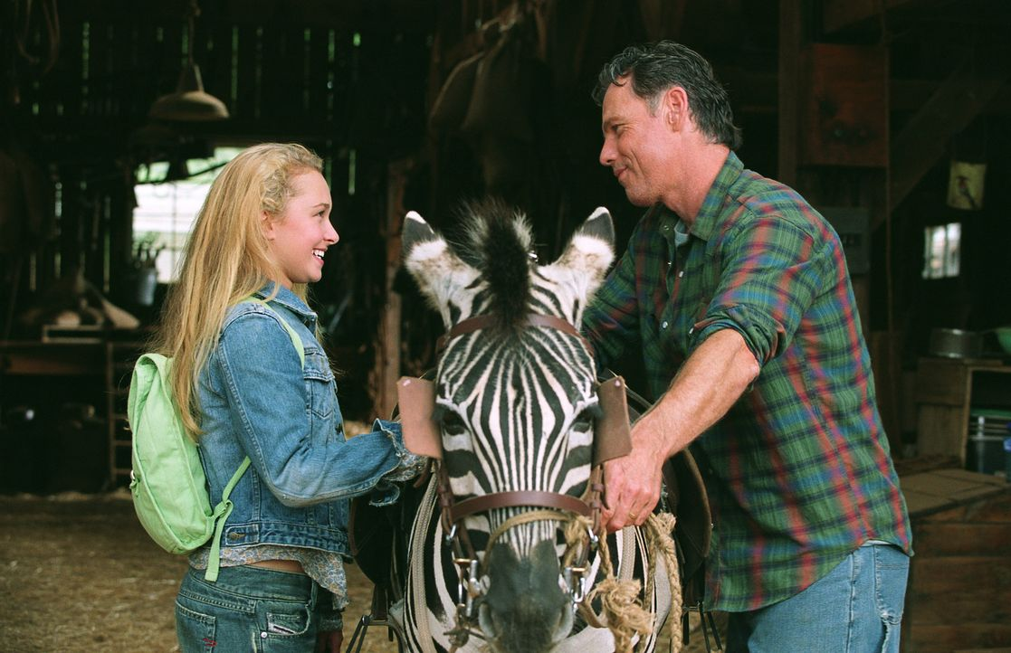 Eines Nachts findet der gutherzige Farmer Nolan Walsh (Bruce Greenwood, r.) das Zebrajunge Stripes (M.), dessen Zirkus es auf der Landstraße verges... - Bildquelle: Constantin Film