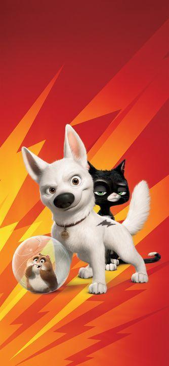 Aufregende Abenteuer warten auf Dino (l.), Bolt (M.) und Mittens (r.). - Bildquelle: Disney Enterprises, Inc.  All rights reserved