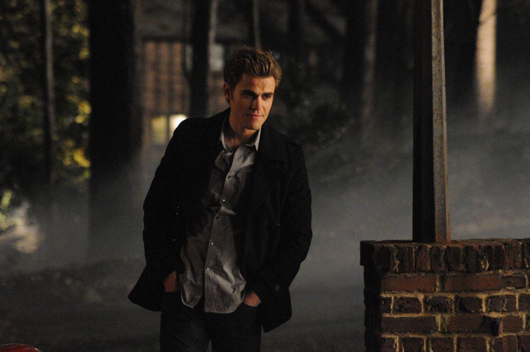 Da hat Stefan (Paul Wesley) wohl ins Schwarze getroffen ... - Bildquelle: Warner Bros. Television