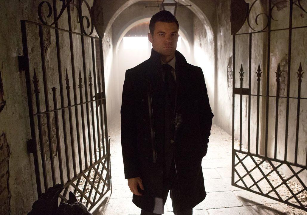Während Klaus mit den Folgen von Auroras Tat zu kämpfen hat, bekommt auch Elijah (Daniel Gillies) eine Botschaft aus der Familie de Martel, die den... - Bildquelle: Warner Bros. Entertainment, Inc.