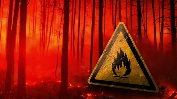 Waldbrandgefahr_Schild