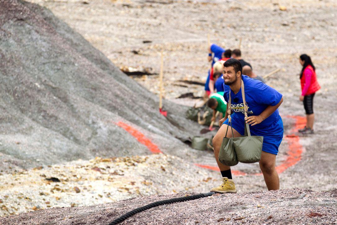 Wer schön und gesund sein will, muss leiden: Erfan schleppt Sand ... - Bildquelle: Enrique Cano SAT.1