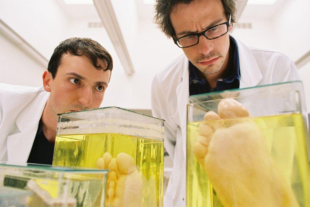 In der Anatomie machen zwei Studenten eine ebenso irritierende wie grausame Entdeckung ... - Bildquelle: Tom Trambow Sat.1
