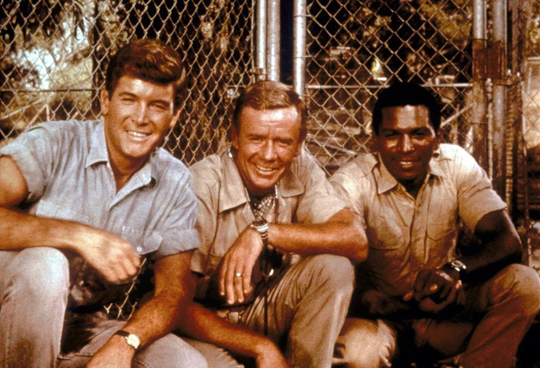 Tierarzt Dr. Marsh Tracy (Marshall Thompson, M.) hat in Afrika eine Buschstation gegründet, in der kranke Tiere versorgt werden. - Bildquelle: CBS Television