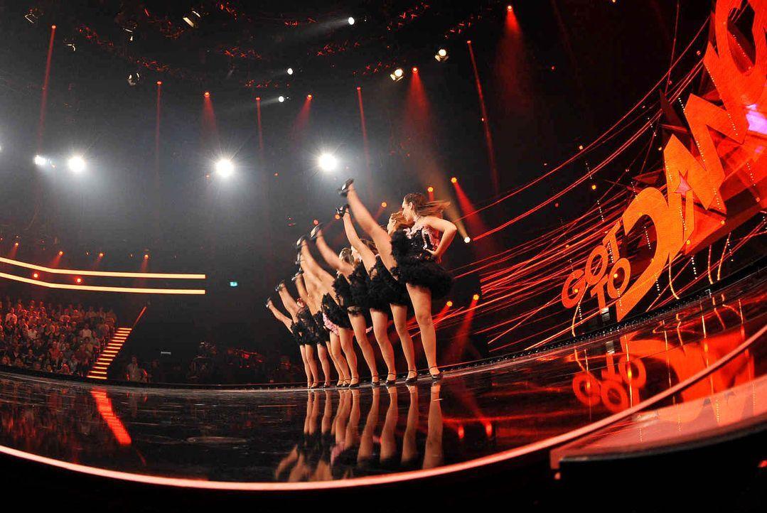 Got-To-Dance-KataMackh-Dance-Company-01-SAT1-ProSieben-Willi-Weber - Bildquelle: SAT.1/ProSieben/Willi Weber