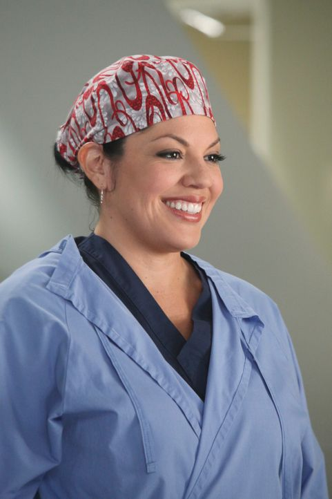 Während Arizona alles tut, um Callie (Sara Ramirez) zurück zu bekommen, bekommen die Assistenzärzte neue Medizinstudenten zugeteilt, die ihnen über... - Bildquelle: ABC Studios