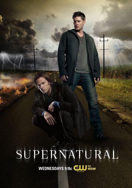 (8. Staffel) - Eigentlich wollen Sam (Jared Padalecki, l.) und Dean (Jensen Ackles, r.) das Leben der unschuldigen Menschen schützen, doch nicht jed... - Bildquelle: 2012   Warner Bros. Television. All rights reserved.