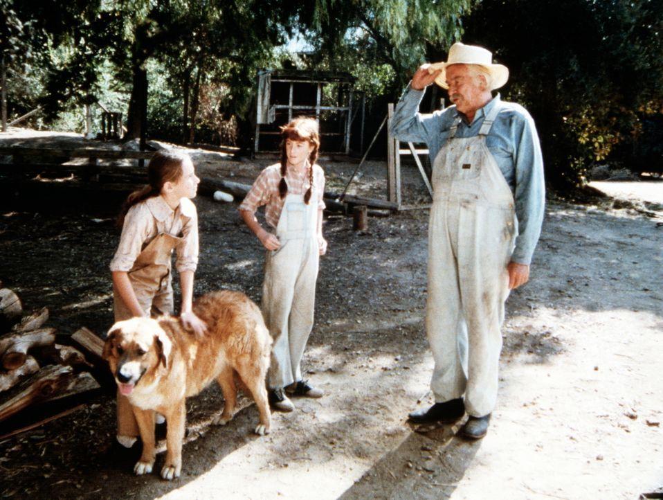 Sam (Will Geer, r.) empfiehlt seiner Enkelin (Kami Cotler, M.) und ihrer neuen Freundin (Tasha Zemrus, l.), dem alten Hund ein wenig Ruhe zu gönnen. - Bildquelle: WARNER BROS. INTERNATIONAL TELEVISION
