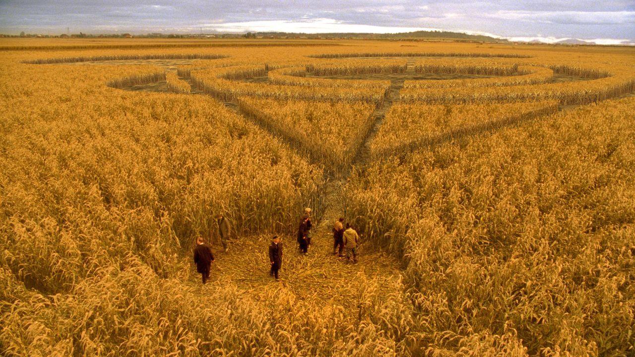 Was hat es mit den eigenartigen Zeichen im Kornfeld auf sich? - Bildquelle: TM &   DREAMWORKS LLC.All Rights Reserved
