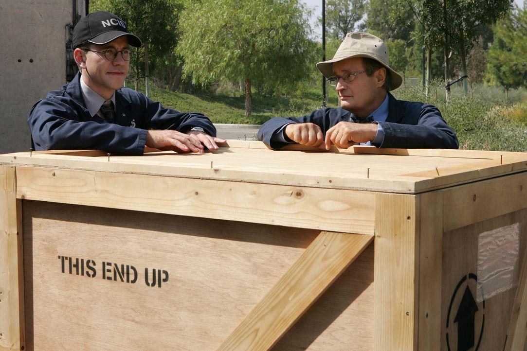 Arbeiten an einem neuen Fall: Jimmy Palmer (Brian Dietzen, l.) und Ducky (Daivd McCallum, r.) ... - Bildquelle: CBS Television
