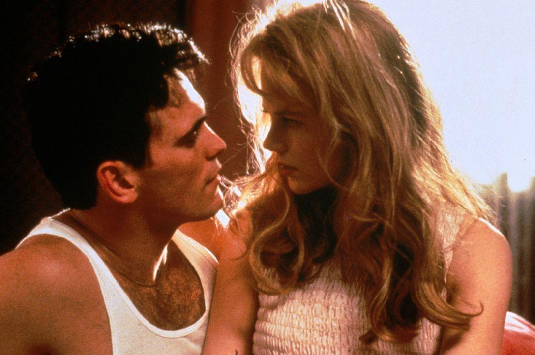 Immer wieder versucht Larry (Matt Dillon, l.), seiner Frau Suzanne (Nicole Kidman, r.) den Traum von einer Fernsehkarriere auszureden ... - Bildquelle: Columbia Pictures
