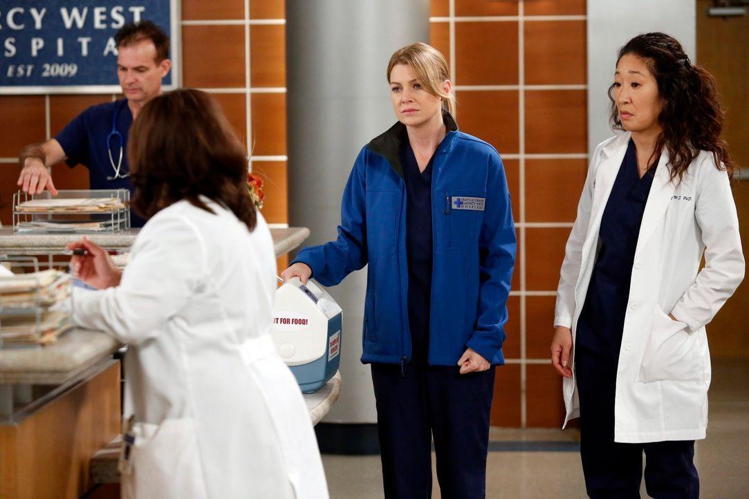Während Arizona nach der Amputation ihres Beins weiterhin mit dem physischen aber auch psychischen Phantomschmerz zu kämpfen hat, herrscht im Kranke... - Bildquelle: ABC Studios