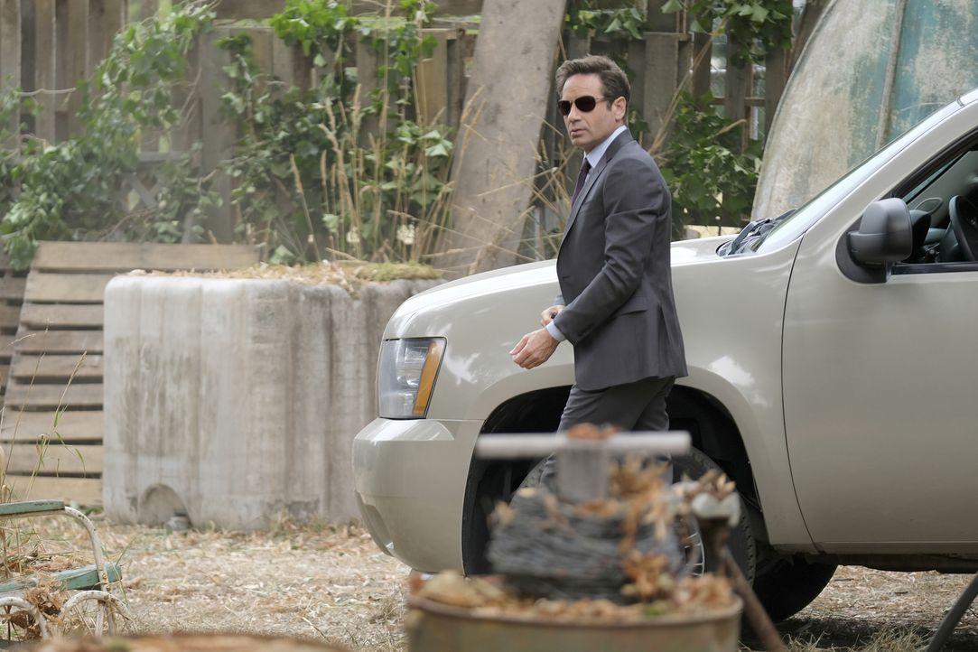 Finden Mulder (David Duchovny) und Scully den wahren Auslöser für die gehäuften Selbstmorde in einer Stadt, bevor noch weitere Menschen sterben? - Bildquelle: Shane Harvey 2017 Fox and its related entities.  All rights reserved.