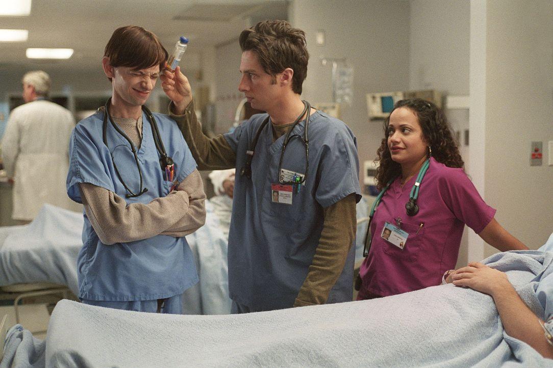 Da J.D. (Zach Braff, M.) und seine Freunde ja nun schon als vollwertige Ärzte zum festen Personal der Klinik gehören, werden ihnen ein paar Medizins... - Bildquelle: Touchstone Television