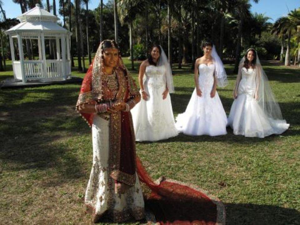 Vier Bräute treten an, im Wettkampf um das schönste Hochzeitsfest: Karen (2.v.l.), Vidya (l.), Maria (r.) und Nataly (2.v.r.) - Bildquelle: 2009 Discovery Communications, LLC