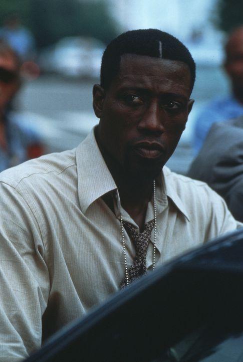 Mord im Weißen Haus: Detective Harlan Regis (Wesley Snipes) vom Washingtoner Morddezernat soll einen mysteriösen Mordfall aufklären. Schon bald komm... - Bildquelle: Warner Bros.