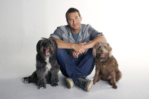 Der Hundetrainer - Lucky Dogs mit Brandon McMillan - (1. Staffel) - Der Hunde...