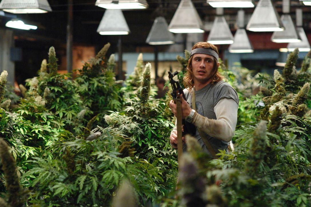 Mitten im Kiffer-Paradies - oder doch in der Hölle? Saul (James Franco) auf der Flucht aus dem Drogenlabor ... - Bildquelle: 2008 Columbia Pictures Industries Inc. All rights reserved.