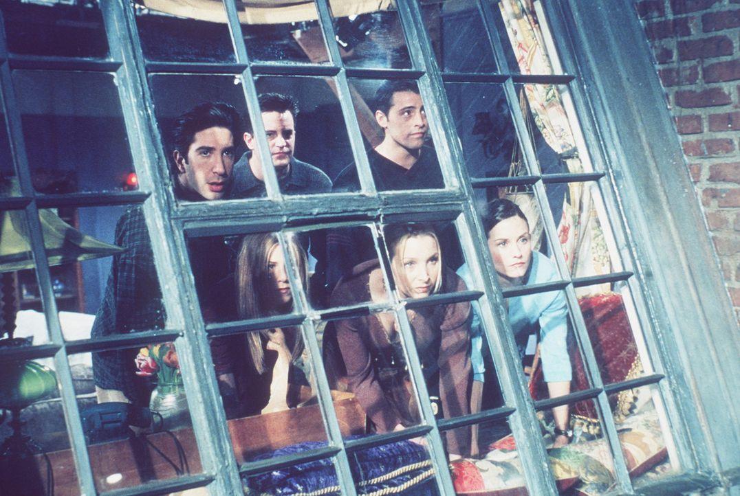 Wieder beobachten (v.l.n.r.) Ross (David Schwimmer), Rachel (Jennifer Aniston), Chandler (Matthew Perry), Phoebe (Lisa Kudrow), Joey (Matt LeBlanc)... - Bildquelle: TM+  2000 WARNER BROS.