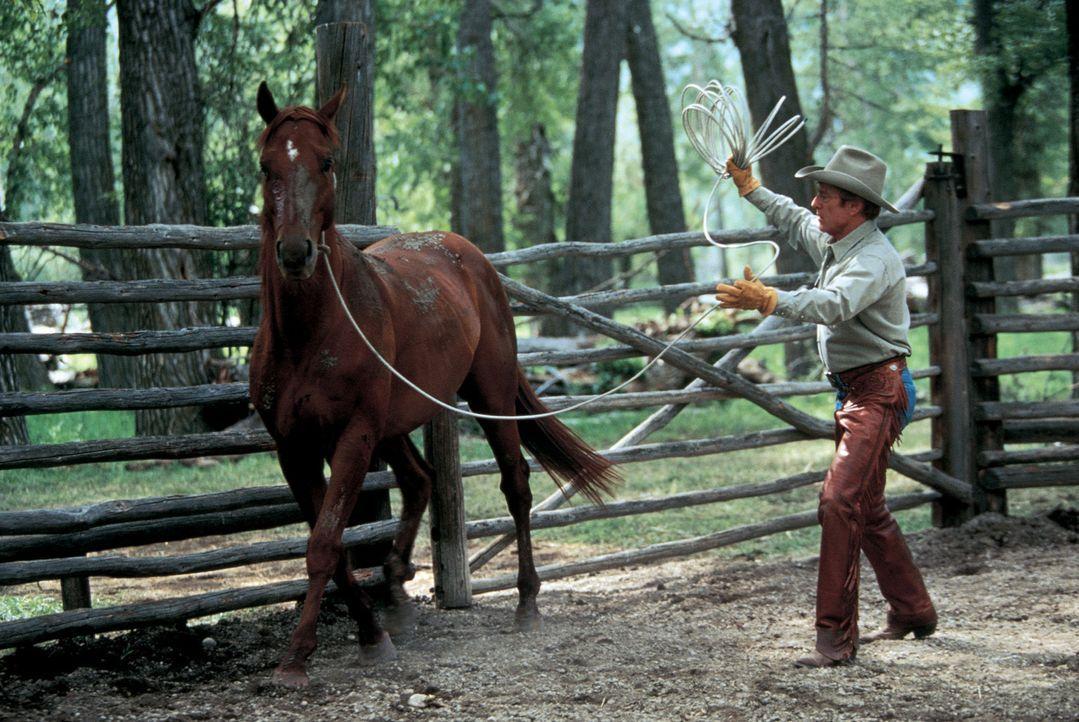 Der Pferdeflüsterer Tom Booker (Robert Redford) versucht, das verstörte Pferd Pilgrim zu heilen - doch wird es ihm gelingen? - Bildquelle: Touchstone Pictures