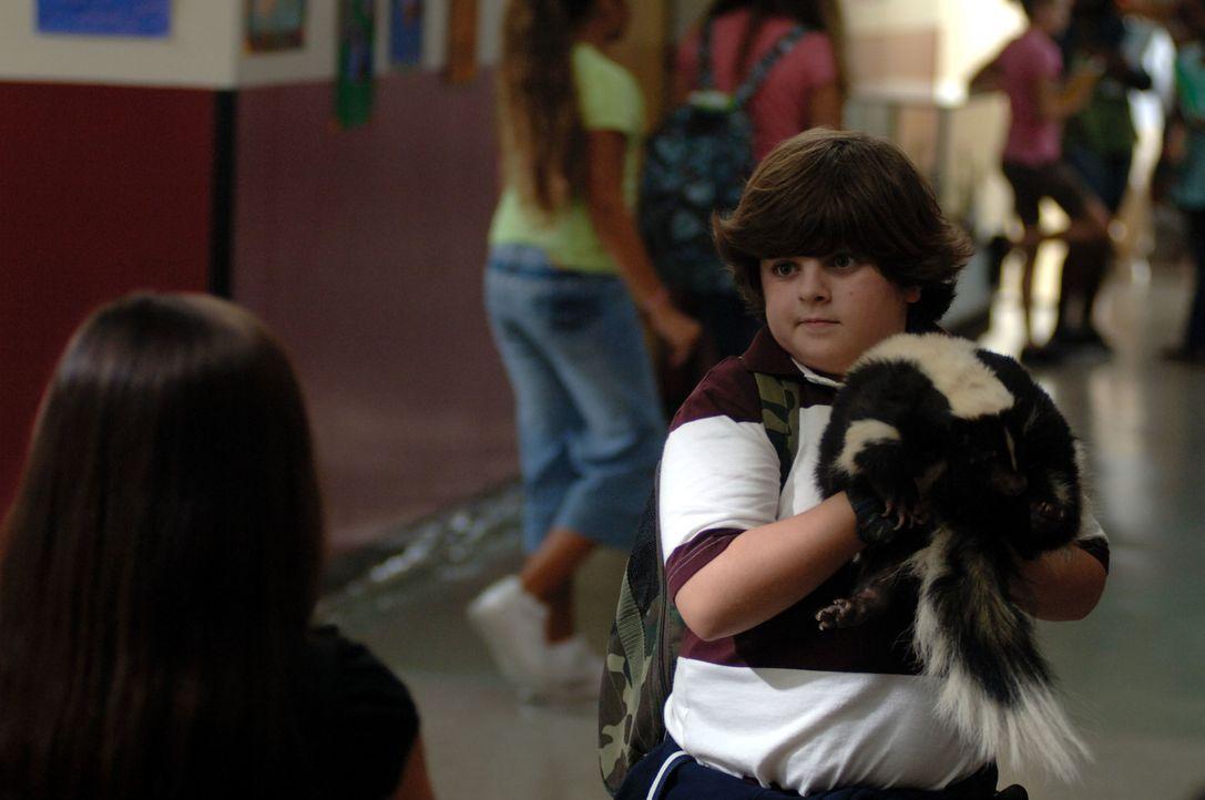 Als seine alleinerziehende Mutter beschuldigt wird, ein Pandababy entführt zu haben, muss Ace Ventura Jr. (Josh Flitter) in die Fußstapfen seines Va...