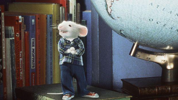 Eigentlich fühlt sich Stuart in seinem neuen Heim sehr wohl - wäre da nicht d...
