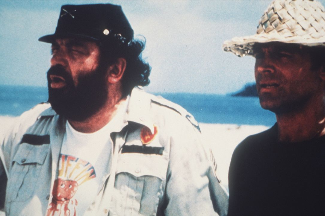 Zwei Asse trumpfen auf: Wo Alan (Terence Hill, r.) und Charlie (Bud Spencer, l.) hinlangen, da wächst kein Gras mehr ...
