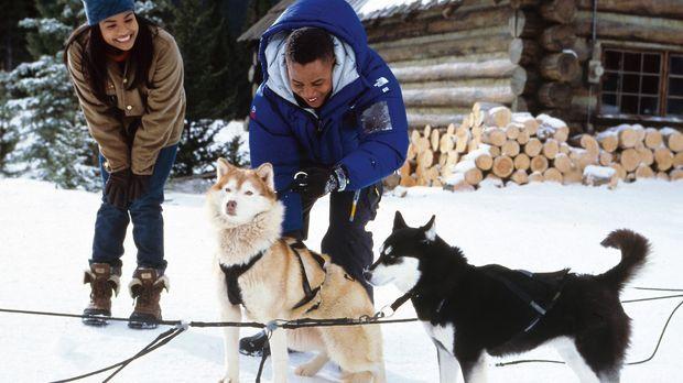 Snow Dogs - 8 Helden auf 4 Pfoten - In Begleitung der reizenden Barb (Joanna...