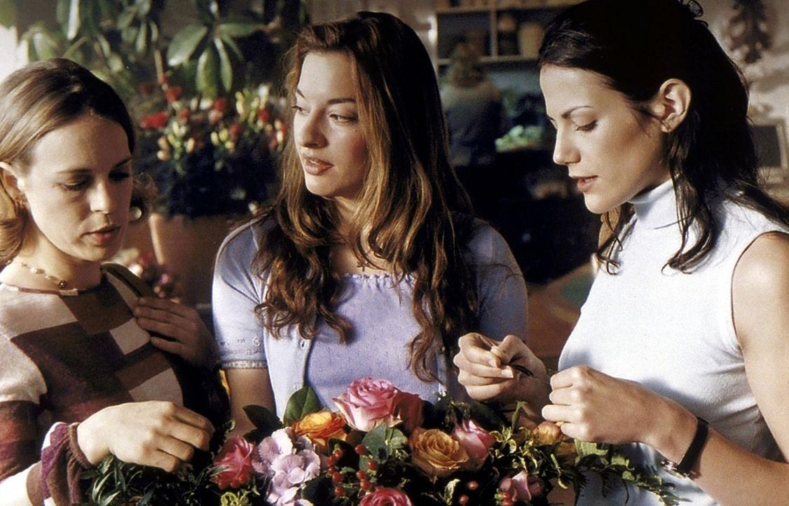 Freundinnen: Uli (Julia Dahmen, M.) und Babs (Anneke Sarnau, l.) nehmen regen Anteil an Annes (Bettina Zimmermann, r.) Hochzeitsplänen. Dies ist je... - Bildquelle: ProSieben