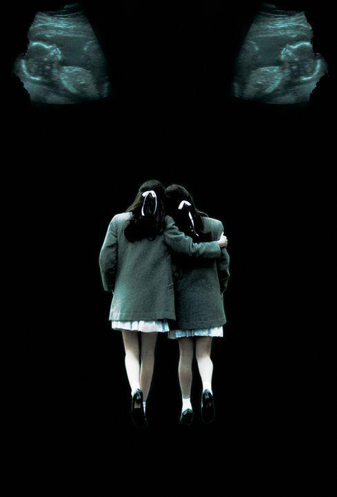 Sisters - Tödliche Schwestern - Plakatmotiv - Bildquelle: Sony 2007 CPT Holdings, Inc.  All Rights Reserved.