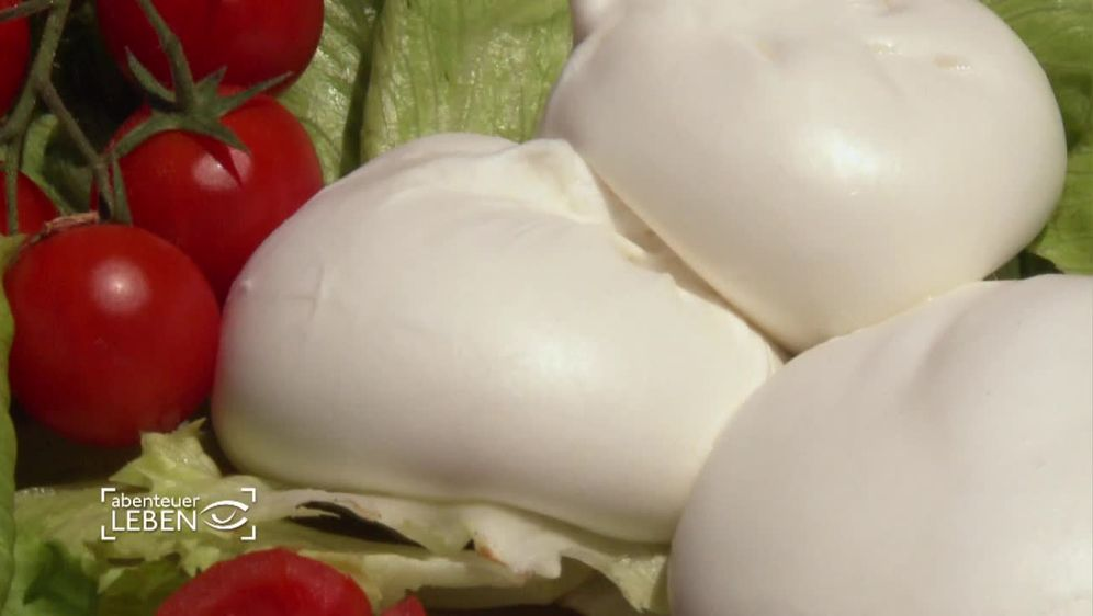 Der Weg des Edel-Mozzarellas (2)
