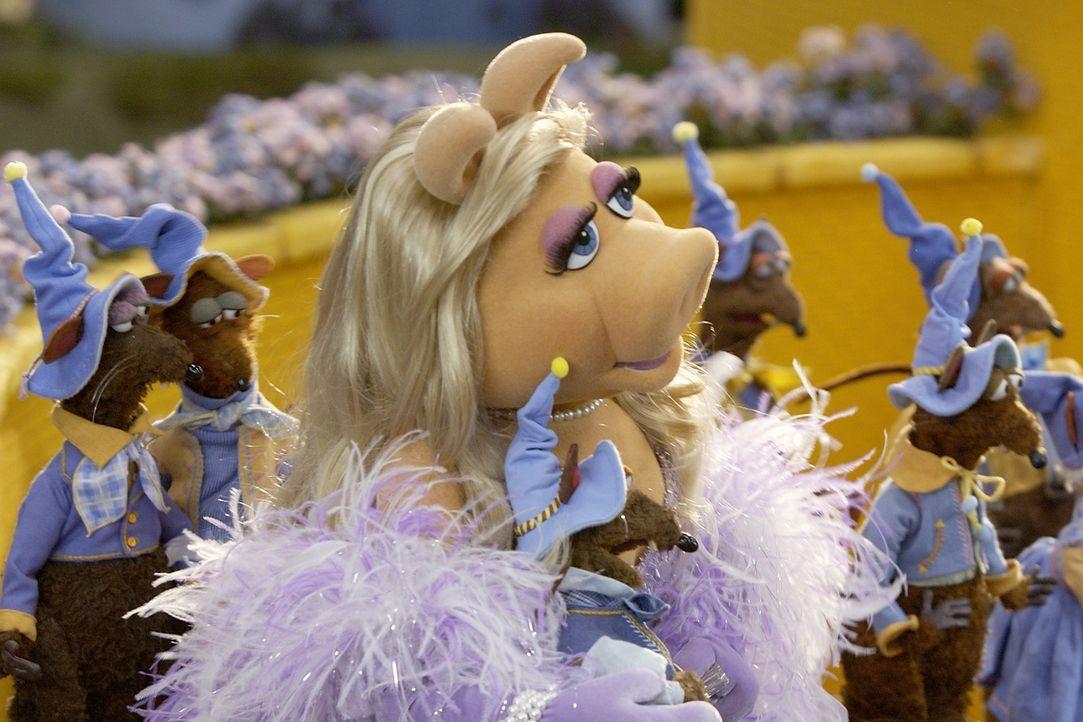 Gemeinsam mit den Munchkins begrüßt die Gute Hexe des Nordens die gelandete Dorothy und überreicht ihr die Silberschuhe, welche die Böse Hexe des Os... - Bildquelle: The Muppets Holding Company, LLC. MUPPETS characters and elements are trademarks of the Muppet Holding Company, LLC.  All rights reserved