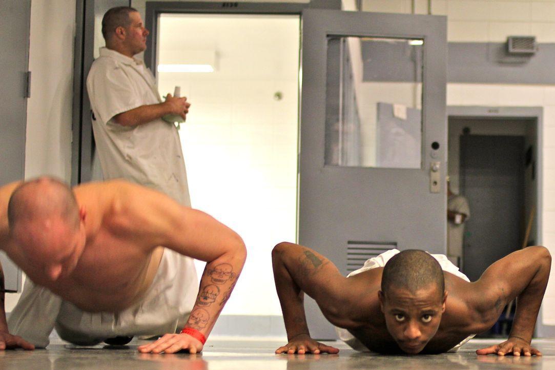 Im Coastal State Gefängnis müssen sich die Insassen harten Trainingseinheiten stellen ... - Bildquelle: Dan Bree part2pictures