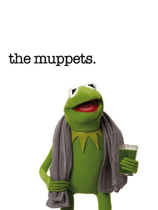 (1. Staffel) - Kermit der Frosch ist der Mittelpunkt des Muppet-Universums. Der Anführer, um den sich alles dreht ... - Bildquelle: ABC Studios