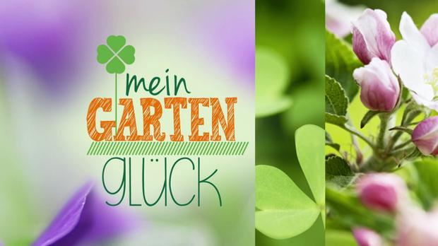 Mein Gartenglück Logo
