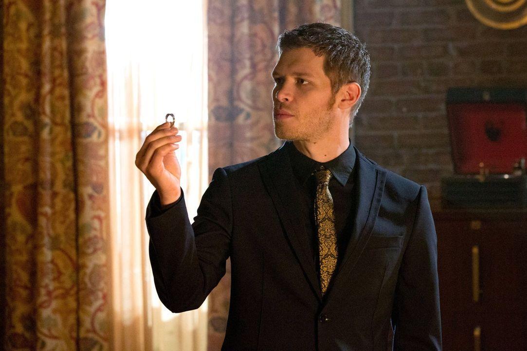 Sein unermüdlicher Wunsch nach einer Familie lässt Klaus (Joseph Morgan) ungewöhnliche Wege gehen ... - Bildquelle: Warner Bros. Television