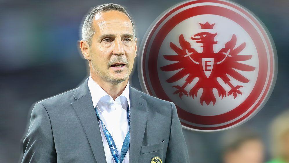 Adi Hütter soll zum Nachfolger von Niko Kovac auf der Frankfurter Trainerban... - Bildquelle: imago/Geisser